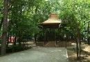 Prea puține spații verzi în județul Hunedoara