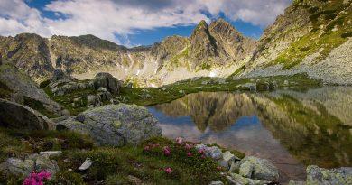 Ministerul Turismului vrea să înfiinţeze Organizaţia de Management al Destinaţiei pentru promovarea destinaţiilor României