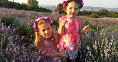 Cristur, Hunedoara: Ferma agricolă care cultivă parfum
