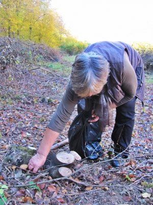 """Mare atenție, daca ieșiți la cules. Verificați de trei ori ciupercile, pentru a nu """"scăpa"""" în oală și vreuna otrăvitoare."""