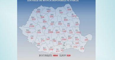 ANOFM: Aproape 28.000 de locuri de muncă vacante la nivel naţional; cele mai multe sunt în Bucureşti, Prahova, Arad şi Sibiu