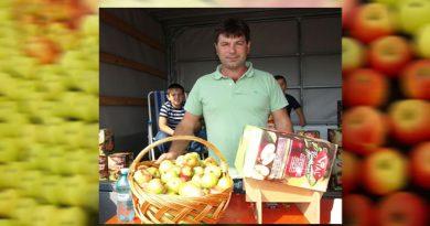 Sucul de măr, pus pe masa românilor de doi hunedoreni