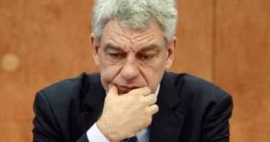 Economia României, tigru sau pisic