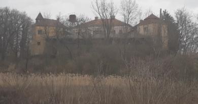 """Monumentele """"orfane"""" de la Brănișca"""