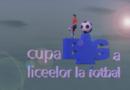 CUPA LICEELOR BIG FM LA FOTBAL ÎN SALĂ