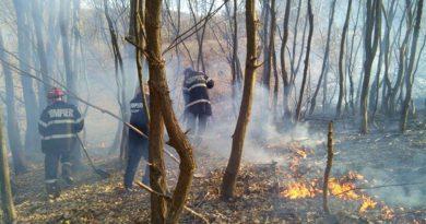 Sfârșit de săptămână plin de intervenții pentru pompierii hunedoreni