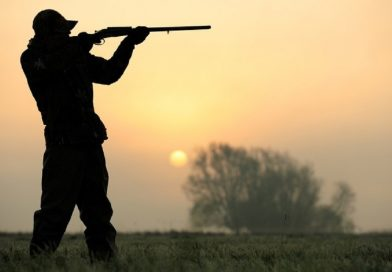 Doi câini împuşcaţi de un bărbat care s-a întors de la vânătoare