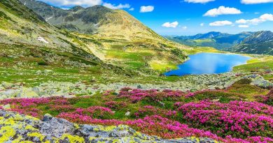 Dispare birocrația privind ariile naturale protejate?