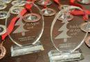 Brăduțul de argint, festival care reunește sute de copii