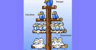 """De ce salariile managerilor sunt calculate în """"Ziua pisicii grase""""?"""