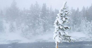 Ciprian Mihali: Vântul înghețat al schimbării