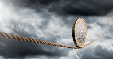Moneda EURO nu e jăraticul care face din mârțoagă cal năzdrăvan în economie