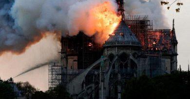 A ars Notre Dame ca un rug