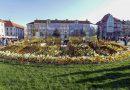 La Timişoara s-a deschis festivalul florilor, Timfloralis