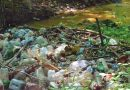 Problema reciclării în România: Jumătate din gunoi provine din străinătate