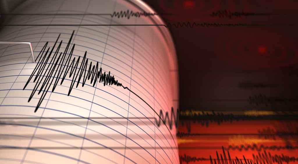 Un cutremur cu magnitudinea 4.5 s-a produs, vineri seară, în Vrancea