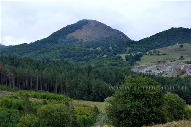 Ministerul Mediului anunţă că va finaliza până la 30 noiembrie opţiunile strategice pentru politica forestieră a României pentru următorii 10 ani