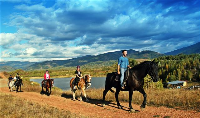 Călare prin munţi – un tânăr din Petrila a lăsat avocatura pentru pasiunea sa pentru cai (GALERIE FOTO)