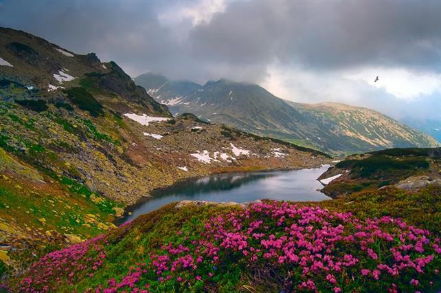 Cine are responsabilitatea pentru menținerea Parcului Național Retezat ca sit UNESCO