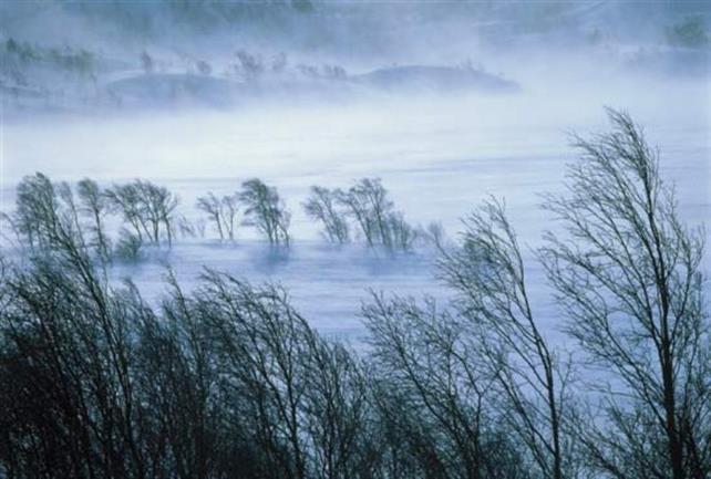 Cod ROȘU de vânt puternic, în Carpaţii Meridionali şi de Curbură. Alerta este valabilă și pentru zona de munte a județului Hunedoara