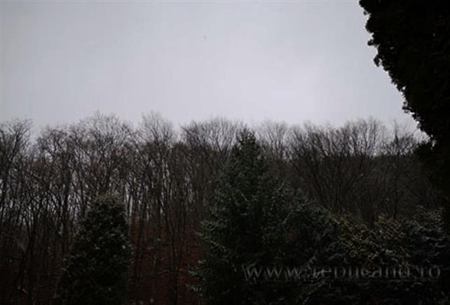 vreme inchisă, iarna