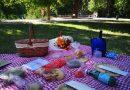 Locurile de picnic, verificate de comisarii Gărzii de Mediu