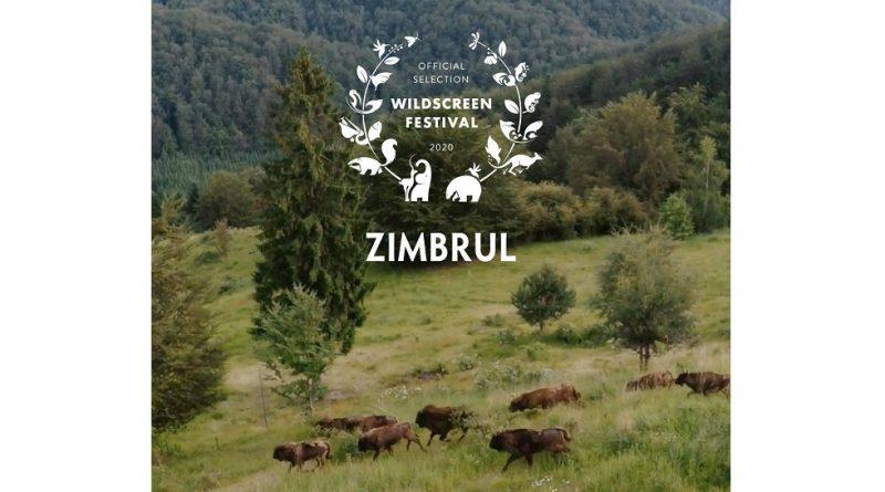 Zimbrul din România, noua imagine a unui festival internațional