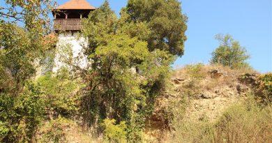 Tristeţea unui monument uitat: Biserica monument din Rapolt